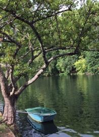 Barque Loing