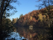Cette région des Yvelines alterne forêts, plaines et passent par de nombreux étangs.