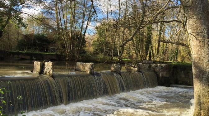 Rando sur Le Loing, canal historique (77)