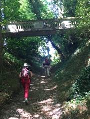 chemin et pont