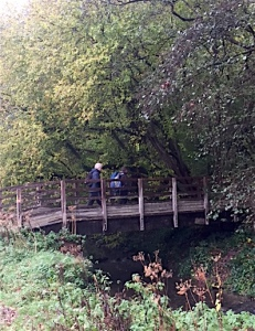 pont-de-bois