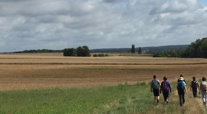 Idée rando : de Saint-Chéron à Lardy (91) 21 km