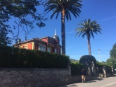 norte maison palm1