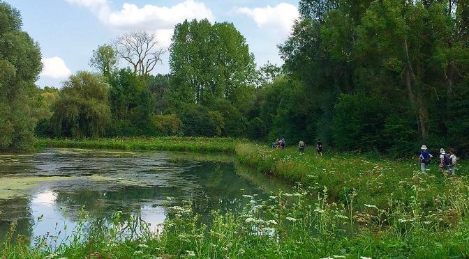 Idée rando Val d'Oise : de Magny-en-Vexin à Chars – 22 km