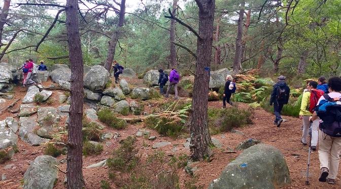 Rando on the rocks  de Fontainebleau à Bois-Le-Roi