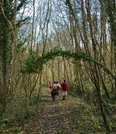 randonnée Seine-et-Marne- Forêt de Nemours