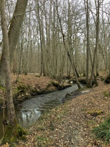 petit ruisseau nomme le Grapelin près de Gambaiseul