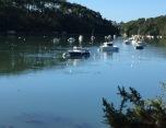 rivière du Bono:optimisation-image-wordpress-google-taille