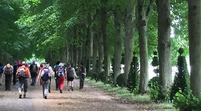 Rando Versailles : du GR au  chemin de croix  !