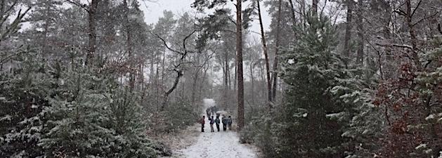 Blanc en neige et Bourron glacé. VIVE L'HIVER en rando !