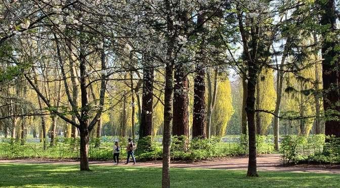 Du parc de Sceaux à la Vallée-aux-loups et l'Arboretum