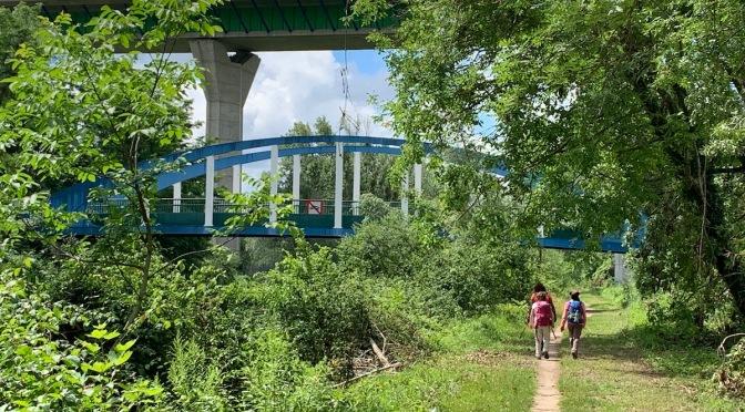 Meaux-Thorigny , 24 km de rando sans mAUX